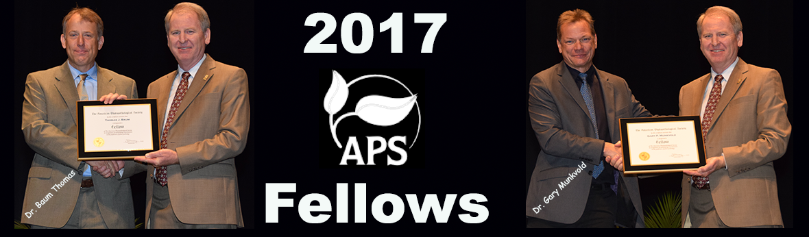 2017 APS Fellows