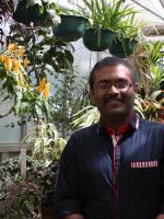 Plant pathology phd thesis