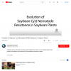 Evolution of Soybean Cyst Nematode (SCN) Resistance in Soybean Plants - YouTube