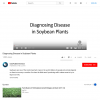 Diagnosing Disease in Soybean Plants - YouTube