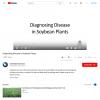 Diagnosing Disease in Soybean Plants - YouTube